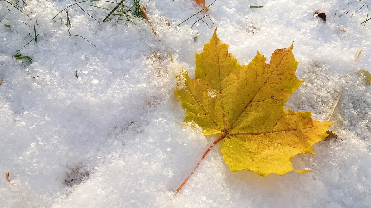 Warsztaty edukacyjne dla dzieci Lubelskie tradycje listopada i grudnia 2019-Fundacja KReAdukacja Lublin